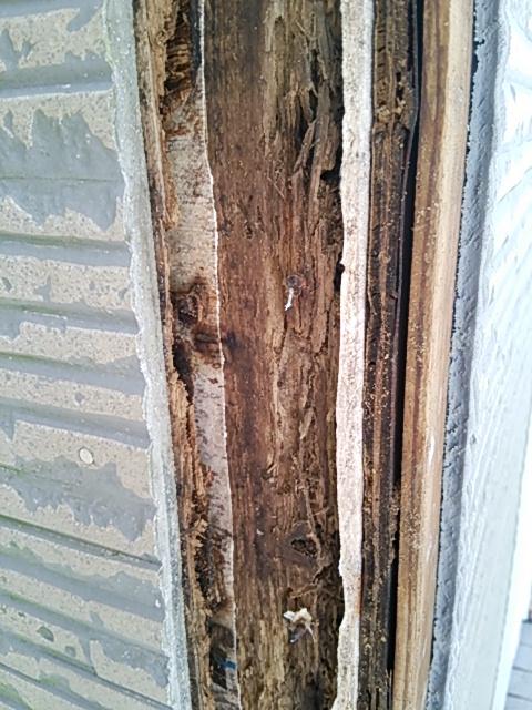 雨漏り、外壁